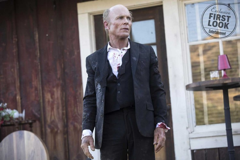 westworld-season-2-ed-harris