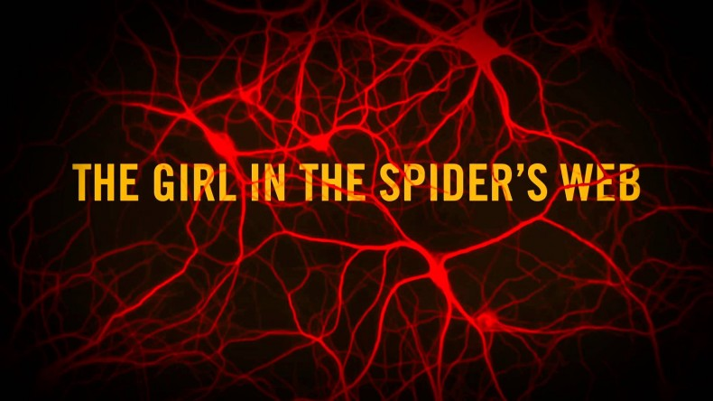 the-girl-in-the-spiders-web-20180821