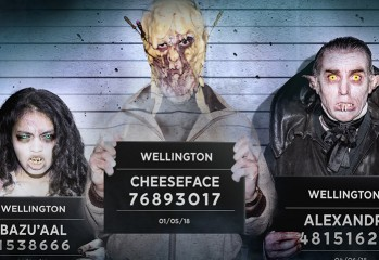 wellington-paranormal aaa