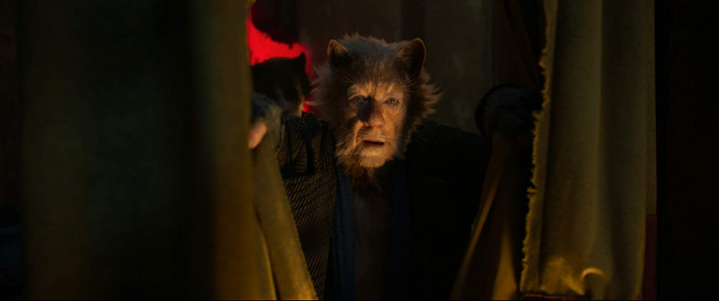 cats-review-img05_20191229